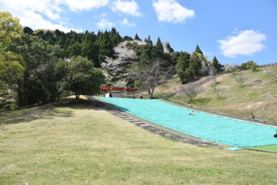 和泉式部公園 草スキー