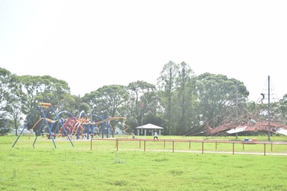 森林公園 遊具